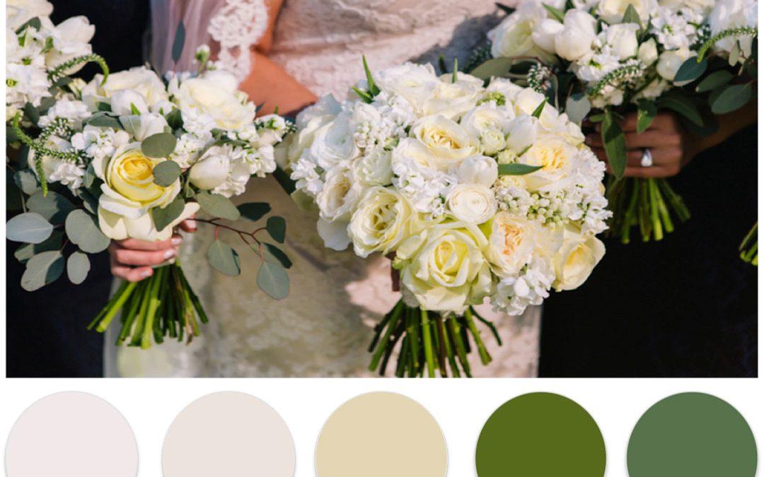 Winter Color Palettes